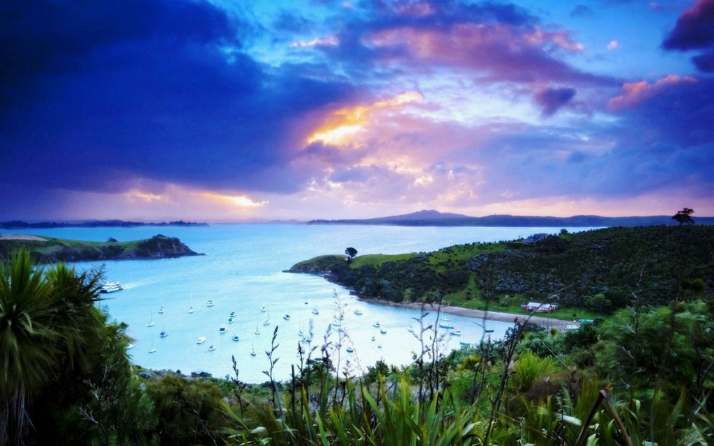 new-zealand-waiheke-island